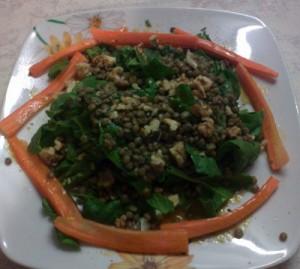 salatafakes